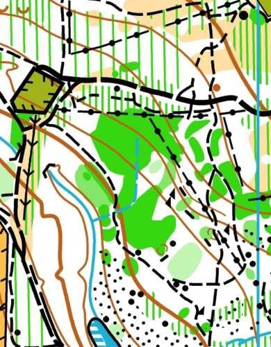Adel Woods Meanwood Park 181120