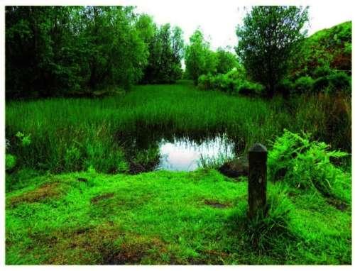 Ilkley Moor Poc